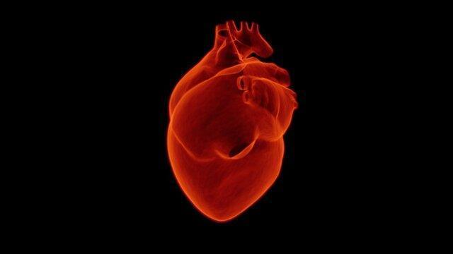 یادگیری ماشینی حمله قلبی را دقیق تر از انسان پیش بینی می نماید