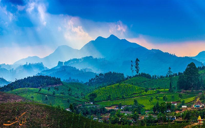 اولین مزارع چای جهان و جاذبه های مونار هند