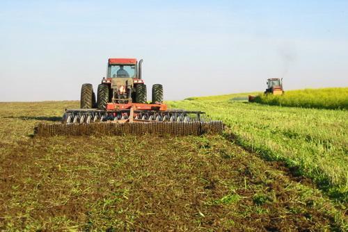 استفاده از کود های نامناسب، ضریب فراوری محصولات پاییزه شمال را با کاهش روبرو نموده است